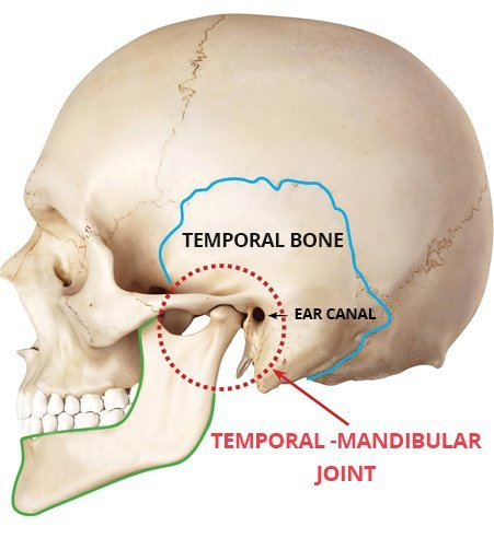 Tmj Temporomandibular Joint What Is Tmj And How Can It Be Treated